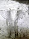 Elephant - Marilyn Comparetto For sale: original drawing, pencil on cartridge paper, framed